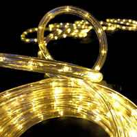 Rope Light WARM WHITE Extendable 10m