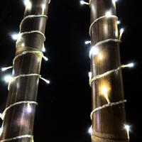 Fairy Lights COOL WHITE 10m Clear Wire Extendable