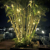 String Lights WARM WHITE 10m Green wire